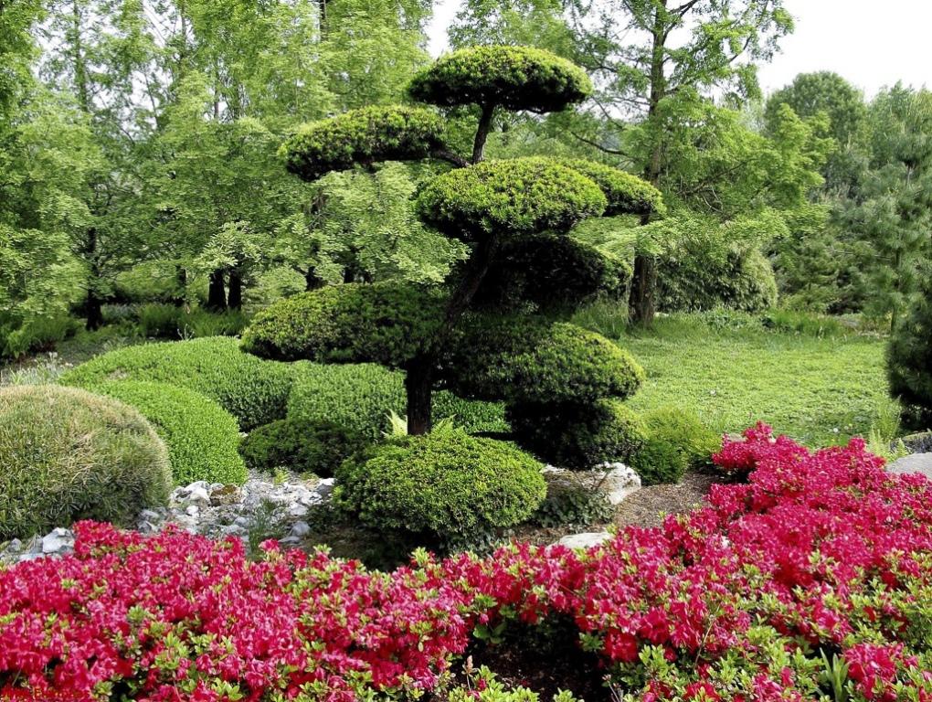 thumbnail_Japanse-tuin